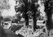 Spicketts Lane photographed in the 1960s before the trees were destroyed by Dutch elm disease.  Lower Farm House can be seen at the end of the lane.